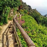 Traseu Monterosso - Vernazza, Cinque Terre