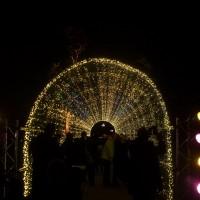 Craciunul la Kew Gardens