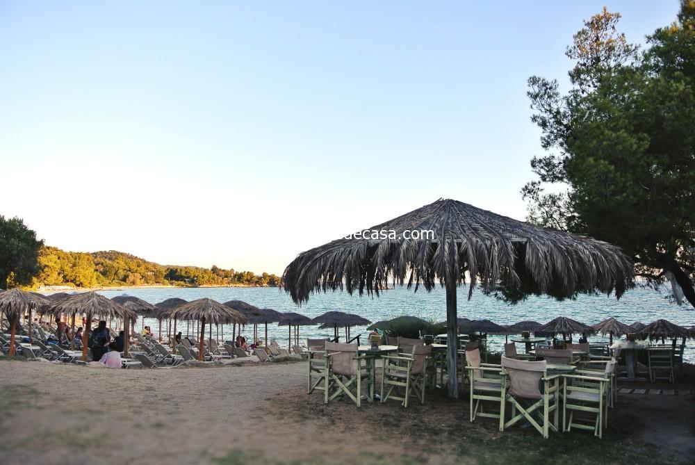 Mango beach Sithonia